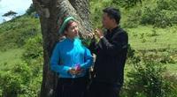 """Quảng Ninh: Vùng đất Đồi Tình nam nữ hát xướng ca, da diết nhất là """"yêu nhau mà không đến được với nhau"""""""