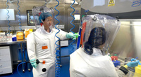 Viện virus học Vũ Hán tuyên bố không tạo ra coronavirus