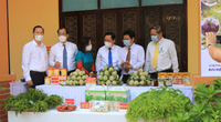 Lạng Sơn: Lập hơn 1.000 cửa hàng số trong 2 tuần, nông dân xứ Lạng lần đầu bán na online