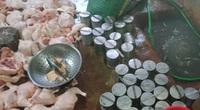 Hà Nam: Phát hiện hơn 1 tạ giò chứa chất hàn the