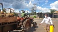 Đắk Lắk: Người dân kêu trời vì thứ quả chi chít gai rớt giá thê thảm