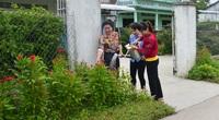 Kiên Giang: Đường nông thôn mới sạch tinh tươm, quanh năm hoa nở tưng bừng, bướm bay khắp chốn