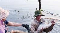 Covid-19 Bình Phước: Cảm động một nông dân từng nghèo nhất làng, nay kéo hơn 2 tạ cá ủng hộ bà con