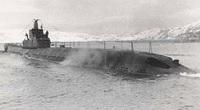 Tàu ngầm P-2 của Liên Xô: Hỏa lực bằng 10 tàu ngầm Mỹ, chở được cả xe tăng