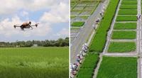 Hệ sinh thái cho chuyển đổi số nông nghiệp Việt Nam: Đặt lợi ích của nông dân làm trọng tâm