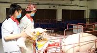 Nông nghiệp Hà Nội: Tăng tốc ngay trong tình hình bình thường mới, phục vụ thị trường cuối năm 2021