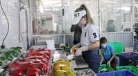 Công nghệ giúp rau, củ Lâm Đồng bán ra nước ngoài, đến tay người tiêu dùng vẫn tươi
