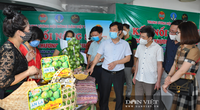 Thủ tướng Chính phủ yêu cầu xây dựng chính sách hỗ trợ nông dân khôi phục sản xuất