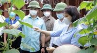 Bắc Ninh: Sẽ hỗ trợ tới 5 tỷ đồng/dự án nông nghiệp công nghệ cao