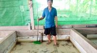 Sóc Trăng: Một ông nông dân hé lộ bí quyết nuôi lươn không bùn đạt tiêu chuẩn xuất khẩu sang thị trường Nhật Bản