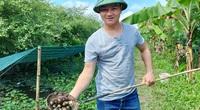 Hải Phòng: Nuôi ốc đặc sản dày đặc trong ao bèo, anh nông dân đẹp giai thu 20 triệu đồng mỗi tháng