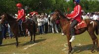 Sảng khoái đua ngựa Gò Thì Thùng