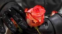 Valentine giải cơn khát việc làm cho người Colombia thất nghiệp