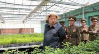 Bình dị nông thôn Triều Tiên dưới thời ông Kim Jong - un