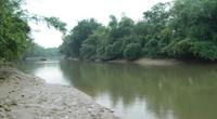Ngôi làng kiên cường bên sông Lạch Trổ