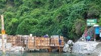 """Bài 3: Vùng lõi di sản vịnh Hạ Long bị """"bê tông hóa"""" từ khi nào?"""