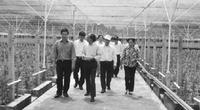 Mục tiêu Xây dựng nông thôn mới của TP.Hồ Chí Minh: 100% số xã về đích năm 2015