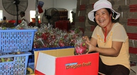 """Trái cây Thái Lan """"tung hoành"""" chợ Việt: Sắp """"mất bò"""", nhanh """"lo  làm chuồng"""""""