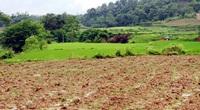 Doanh nghiệp vẫn e ngại rào cản đất đai