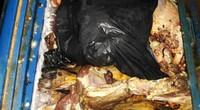 Tận thấy dùng hóa chất biến thịt bò thối, ruồi bâu thành...tươi rói