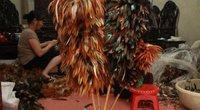 Làng nghề làm chổi lông gà Triều Khúc: Phấn khởi được lên báo Tây