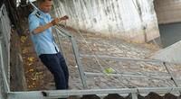 Cá Koi sông Tô Lịch chết nổi: Tăng cường bảo vệ trông 24/24