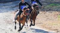 Hội đua ngựa Báo NTNN-Phú Sơn: Dấy lên tinh thần kỵ sĩ nông dân