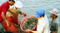 Tái cơ cấu nông nghiệp, Thủ tướng: Phát triển ĐBSCL là kiến tạo, bền vững