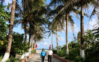 Ra Trường Sa ngắm đảo dừa giữa Biển Đông