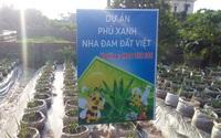 """Hải Dương: Sở NNPTNT cảnh báo về mô hình """"phủ xanh nha đam đất Việt"""" sau phản ánh của Dân Việt"""