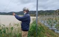 Lâm Đồng: Hồ thủy lợi Pró liên tục bị xâm lấn, tỉnh chỉ đạo kiểm tra