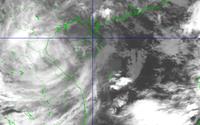 Tin mới nhất: Bão số 8 chỉ cách Hà Tĩnh 200km, biển động rất mạnh, trưa chiều nay bão sẽ đổ bộ vào đất liền