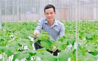 Điểm tựa vững chắc của nông dân trong phát triển kinh tế