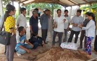 Bình Định: Nông dân Tây Sơn thi đua xây dựng tổ chức Hội vững mạnh
