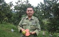 """Vườn cam """"độc, lạ"""" của chàng trai 8x ở Hà Tĩnh hút khách"""