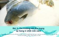 """Thị trường nội địa mang lại hàng tỉ USD mỗi năm cho ngành chế biến thủy sản, đang bị """"lãng quên"""""""