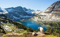 Video: Tham quan khung cảnh tuyệt vời của Vườn quốc gia Glacier tại Mỹ