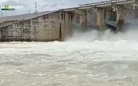 Video: Thủy điện Đồng Nai đồng loạt xả lũ, hàng trăm tấn cá tôm và hoa màu bị nước lũ nhấn chìm
