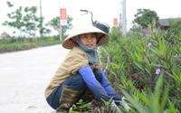 Hà Nam: Tự làm khó mình để phấn đấu trong xây dựng nông thôn mới kiểu mẫu