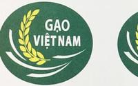 Thần tốc cấp nhãn hiệu chứng nhận Gạo Việt Nam