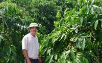 Lâm Đồng: Trang trại 40ha trồng những cây gì, nuôi những con gì mà ông nông dân cầm chắc lãi 10 tỷ năm 2021?