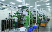 Chính phủ Việt Nam hỗ trợ tối đa doanh nghiệp khôi phục sản xuất kinh doanh