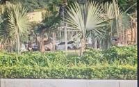 Hải Phòng: Đang điều tra, truy bắt nhóm thanh niên hỗn chiến, khiến 2 người thương vong