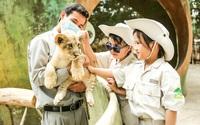 Một ngày vào vai nhà động vật học giữa thiên đường hoang dã Vinpearl Safari