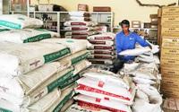 Giá phân bón tăng chóng mặt: Người dân miền Tây kiếm đồng tiền lời từ việc trồng lúa bằng cách nào?