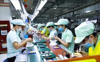 TP.HCM: Hơn 502.000 lao động nhận hỗ trợ từ Quỹ Bảo hiểm thất nghiệp