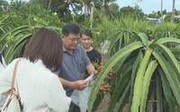 Trà Vinh: Cứ 1 nông dân giỏi đảm nhận giúp 2 hộ nghèo vượt khó