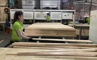Sức mua tăng cao chưa từng có tại Mỹ, sản phẩm thế mạnh của Việt Nam thu ngay 11,11 tỷ USD
