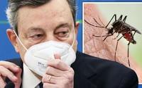 """Các quan chức y tế lo ngại """"muỗi ngoài hành tinh"""" hoành hành ở Ý"""