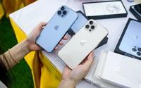 iPhone 13 Pro Max: Từ siêu phẩm có màn hình tốt nhất đến cháy hàng trong thoáng chốc